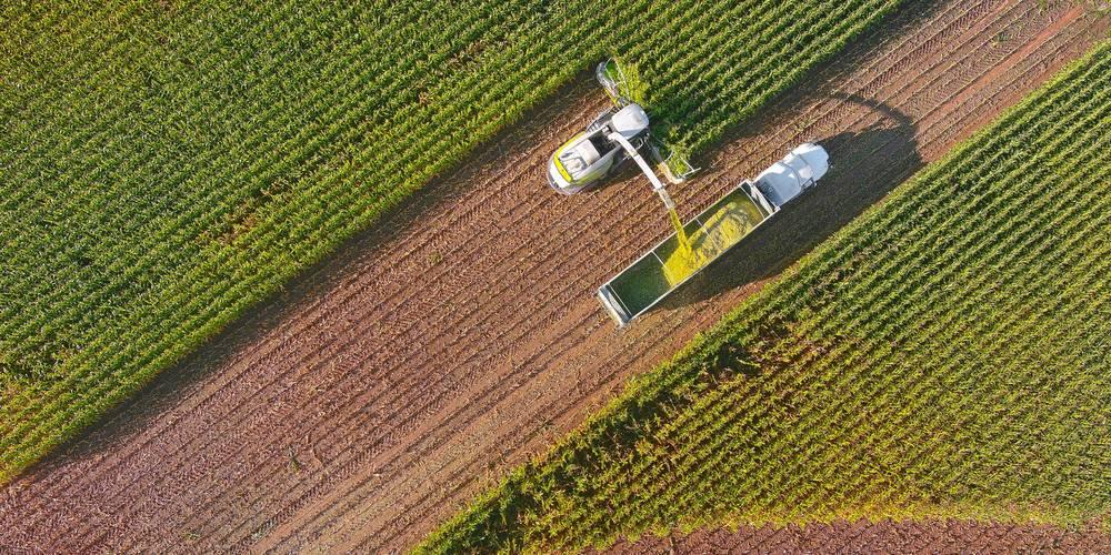 Aktien zu Agrarrohstofferzeuger