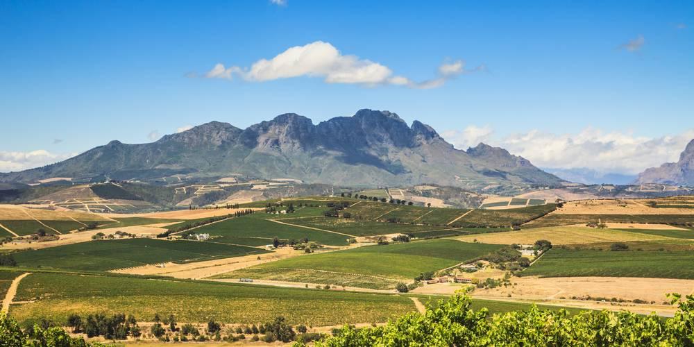 Aktien zu Aktien Südafrika