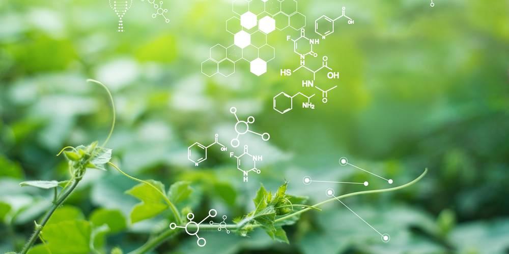 Aktien zu Biopharmazeutika