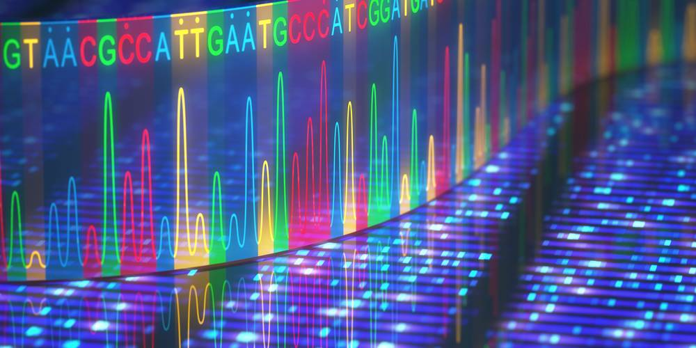 Aktien zu DNA-Sequenzierung