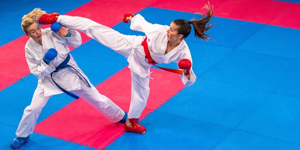 Aktien zu Kampfsport