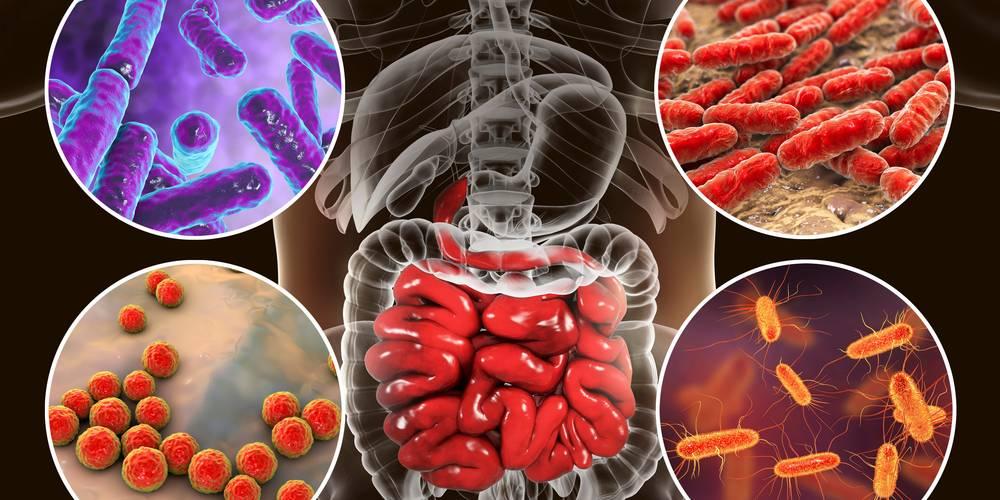 Aktien zu Stoffwechselerkrankungen