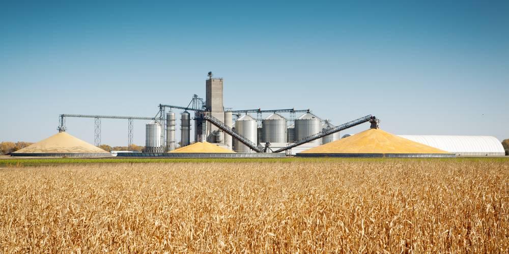 Aktien zu Zellulose-Ethanol