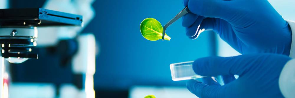 Aktien zu Agrar-Biotechnologie