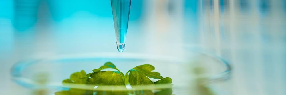 Aktien zu Biochemie