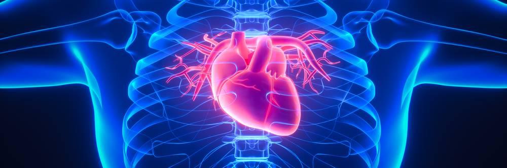 Aktien zu Herz-Kreislauf-Behandlung