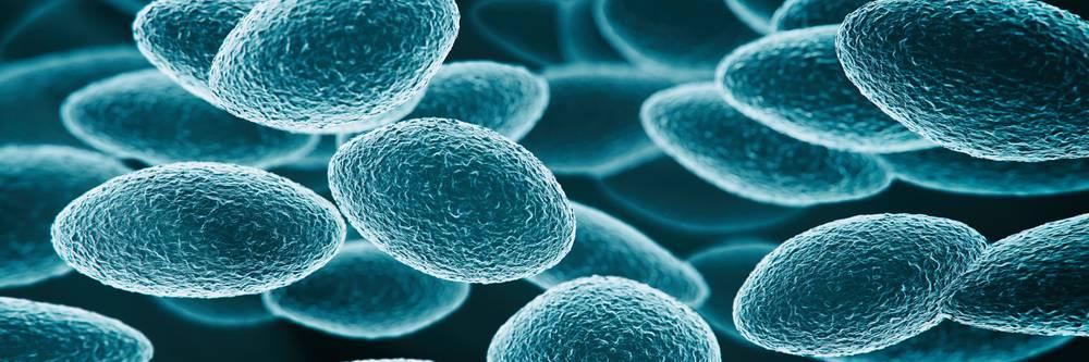 Aktien zu Nanotechnologie